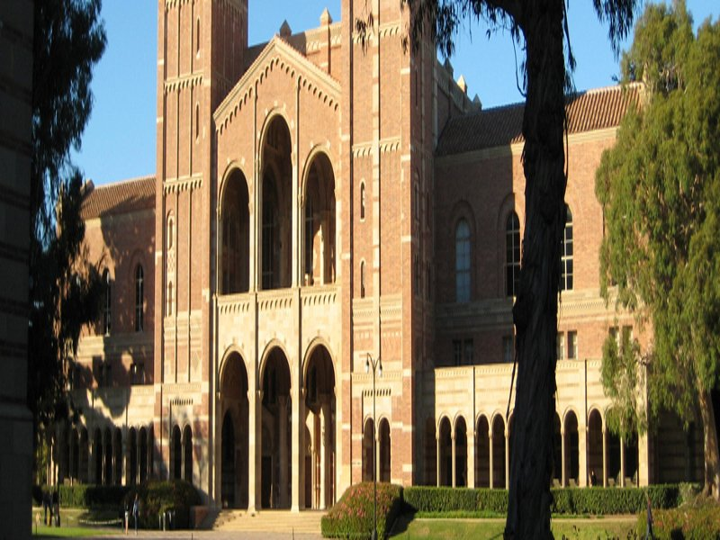 14.   University of California, Los Angeles (UCLA)
